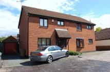 semi detached property to rent in Barlows Reach, Chelmsford