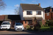 Oak Lodge Tye Detached house for sale