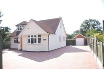 Maldon Road Bungalow for sale