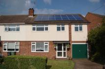 4 bed semi detached property for sale in Hadley Close, Bocking...