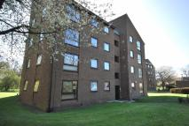 Block of Apartments to rent in Mountwood...