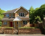 2 bed semi detached property for sale in Eden Park Avenue...