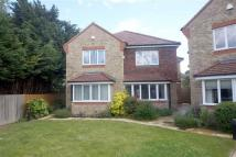 3 bed semi detached house to rent in Maibeth Gardens...