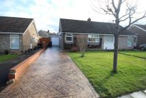Semi-Detached Bungalow to rent in Sedgefield Road...