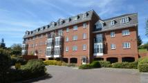 2 bed Flat to rent in Caversham, Reading