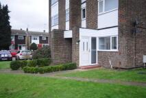 property to rent in Birk Beck, Waveney Drive, Chelmsford, CM1