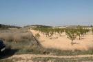Jumilla Land for sale
