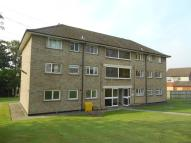 Hermes Place Ground Flat to rent
