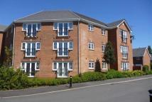 Flat to rent in Squires Grove...