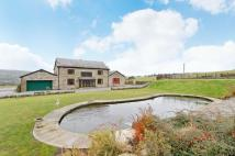 Detached house for sale in Bamford Road, Ramsbottom...