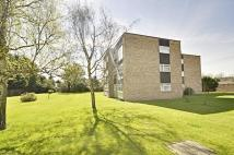 Flat to rent in Spencer Road, Isleworth...