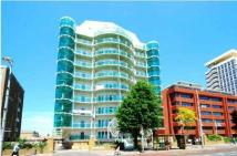 2 bed new Apartment in Cavalier House...
