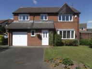 Detached property for sale in Horton Drive, Cramlington