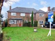 Detached house to rent in Torton Hill Road, Arundel