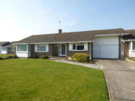 Detached Bungalow for sale in Preston Paddock...