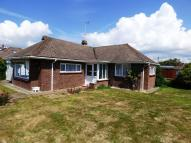Detached Bungalow to rent in Windmill Drive...
