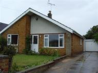 Detached Bungalow to rent in Dadsley Road, Tickhill