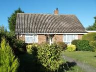 Detached Bungalow to rent in Manor Court, Blunham...