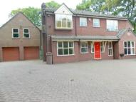 6 bed Detached home to rent in Willow Bank...