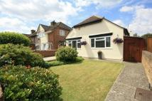 Detached Bungalow in Desford Way, Ashford...