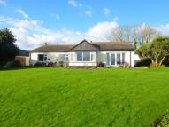 Detached Bungalow in Rosevine, Portscatho...