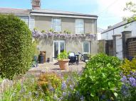 Cottage for sale in Pauls Terrace, Truro