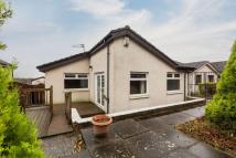 Detached Bungalow in 116 Millfield Hill...
