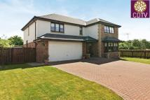 Detached Villa in 8 Patrickbank View...