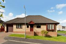 Detached Bungalow in 2 Auchengreoch Road...