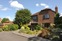 Detached house to rent in BRENT COURT, Emsworth...