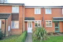 Terraced property to rent in Somergate...