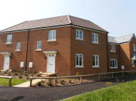 3 bed semi detached house to rent in Eagle Park (Plot 73)...