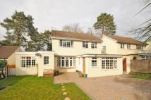 3 bedroom Detached property in St Johns, Woking, Surrey...