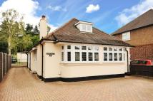 Bungalow for sale in Brookwood, Woking...