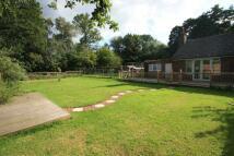 3 bed Bungalow for sale in Brookwood, Surrey, GU24