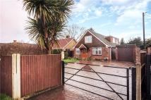 Bungalow for sale in West End, Woking, Surrey...