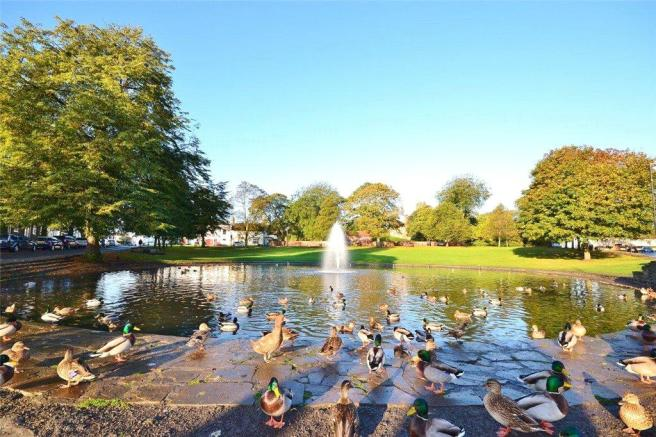 Norton Duck Pond