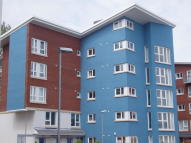 Apartment to rent in JIM DRISCOLL WAY...