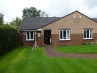 Semi-Detached Bungalow to rent in Landmark Court, Bolton...