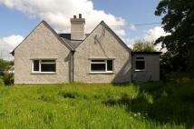 2 bed Cottage to rent in Lledwigan Lodge...
