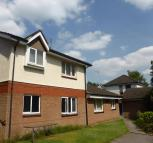 Studio flat to rent in Givendale Drive...