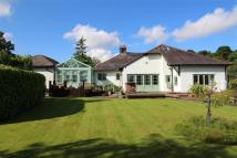 Detached home in Blakeley Road, Raby Mere...