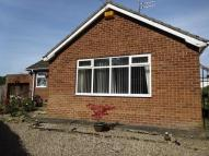 2 bed Detached Bungalow to rent in Green Lane...
