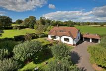 5 bed Detached house for sale in Shepherds Lane...
