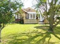 4 bed Detached Bungalow in The Croft...