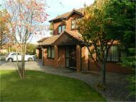 Detached property for sale in Grange Court, RHYL...
