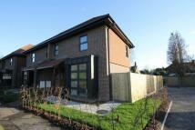 new home in Sunte Avenue, Lindfield...