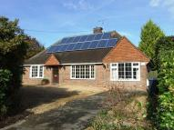 Detached Bungalow for sale in Chestnuts Close...