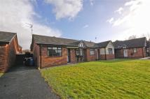 Terraced Bungalow for sale in Alexandra Close...