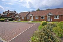 2 bed Terraced Bungalow for sale in Norbury Grove...
